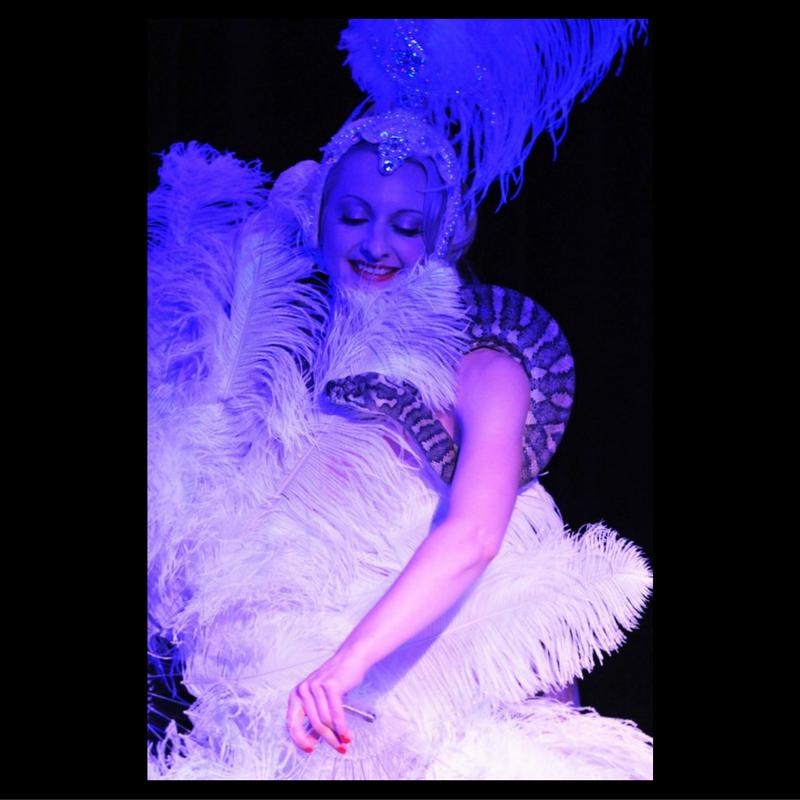1920s burlesque feather fan dance. Serpent Dancer